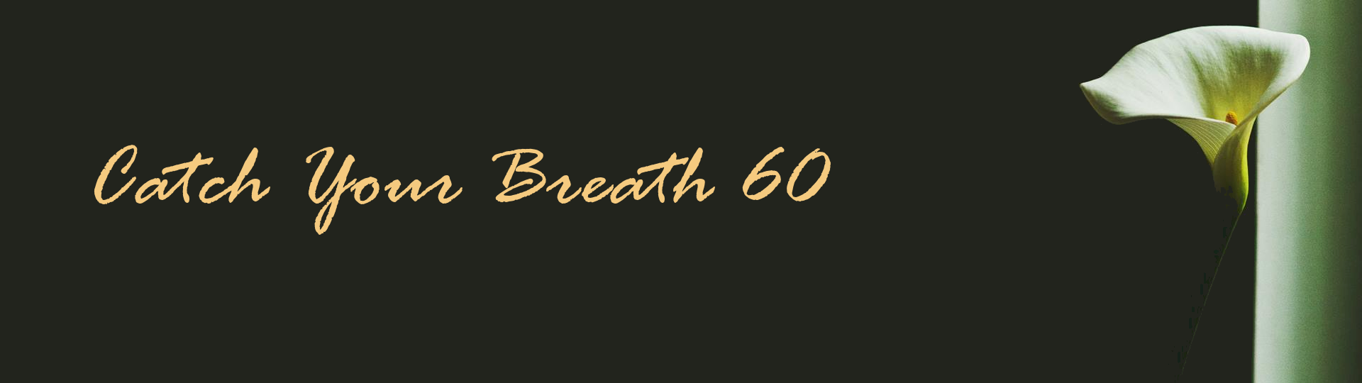 Catch Your Breath 60